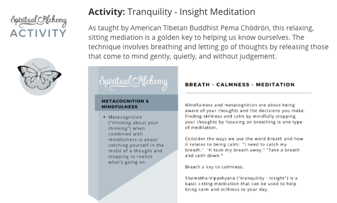 Mindfulness and Metacognition | Spiritual Alchemy